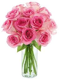 pink bouquet bouquet of 12 fresh cut pink roses with vase by