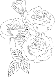 roses coloring pages coloring pages to print