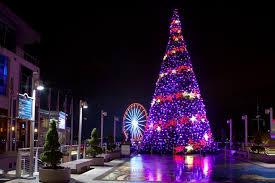 2pm harbor holiday movies national lampoon u0027s christmas vacation