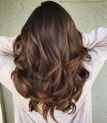 low light hair color 60 chocolate brown hair color ideas for brunettes