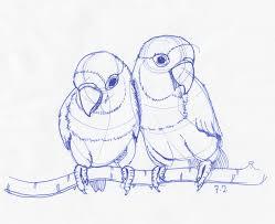 february 7th love birds sketchdaily
