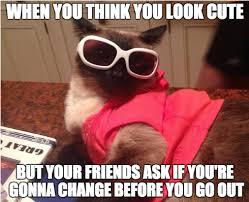 Sassy Cat Meme - sassy fashion cat album on imgur