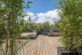 terrasses et jardin plante terrasse nord ouest zimerfrei com u003d idées de design pour
