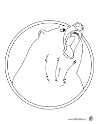 american black bear coloring pages hellokids com