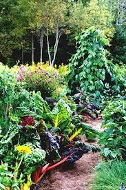 trellis ideas for vertical gardening veggie best vegetable garden