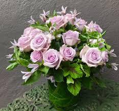 garden 26 in santa monica romantic cool water rose in santa monica ca domini carrington