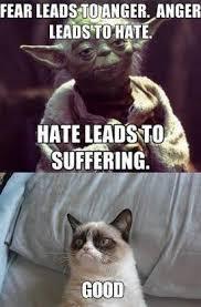 Fear Meme - fear leads to cat meme cat planet cat planet