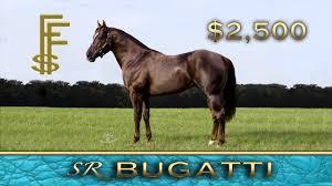 ferrari horse vs mustang horse sr bugatti youtube