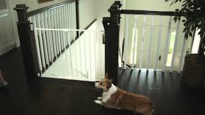 Munchkin Safe Step Gate Extending Metal Safety Gate By Munchkin Removal And Replacement