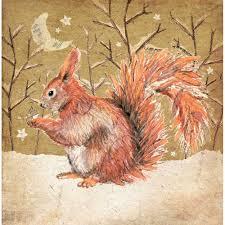snowy squirrel christmas cards rspb christmas cards rspb shop