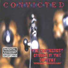 convicted felons the crookedest crooks in the country cd album