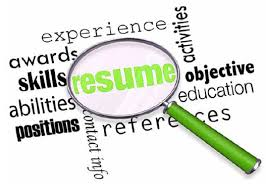 search skills resume writing