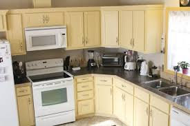 Paint To Use On Kitchen Cabinets Paint Kitchen Cabinet Magnificent Refinishing Oak Cabinets