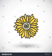 sunflower sketch hand drawn cartoon nature stock vector 366143267