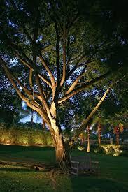 lighting outdoor tree lighting ideas big ornaments swing chair
