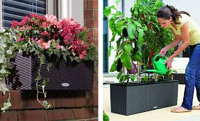 apartment gardening tips how to choose a balcony planter