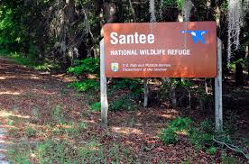 South Carolina nature activities images Santee south carolina america 39 s value golf destination jpg