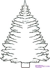 drawn pine tree cartoon pencil and in color drawn pine tree cartoon