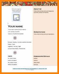 comprehensive resume format resume templates audit assistant