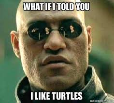I Like Turtles Meme - what if i told you i like turtles matrix morpheus make a meme
