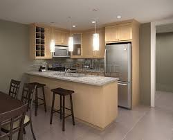 Maple Cabinet Kitchen Ideas Simple Natural Maple Kitchen Cabinets L Inside Design