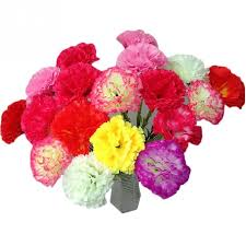 carnations flowers 10pcs artificial carnations flowers for home decoration mothers