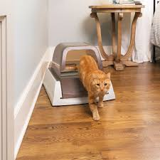 Pet Safe Laminate Floor Cleaner Shop For Scoopfree Ultra Self Cleaning Litter Box By Petsafe