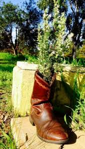Cowboy Boot Planter by Category Culture The Equestrianista