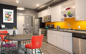 1 Bedroom Apartment San Francisco by San Francisco Apartments Apartments For Rent In San Francisco Ca