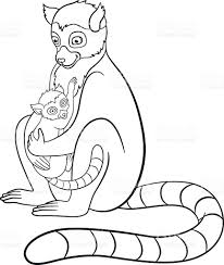coloring pages mother lemur with her little cute baby stock vector