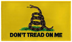 Yellow Flag With Snake Amazon Com Gadsden Flag Large Embroidered Patch Dont Tread On Me