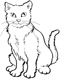 cat color pages printable coloring pages cat coloring