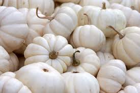 white pumpkins 6 ways to style your porch for fall niblock homes