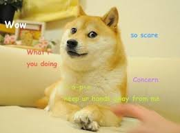 Doge Meme Original - doge meme wikipedia