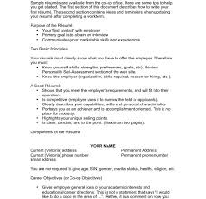 First Resume Objective Clever Ideas Good Resume Objective Statement 15 Unusual Idea