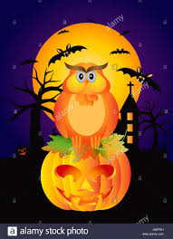 halloween background colors happy halloween orange fall color cartoon owl sitting on jack o