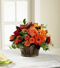 shop thanksgiving flowers and save blooms today