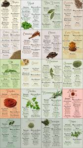 best 25 spice chart ideas on pinterest spices how to cook and