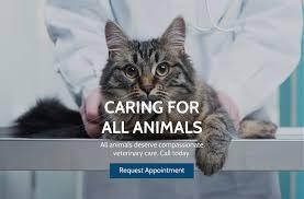pga animal clinic veterinarian in palm beach gardens fl usa home