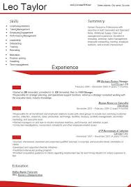 newest resume format standard professional resume format new resume format 3 newest