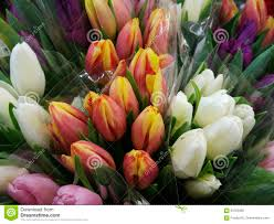 Spring Flower Bouquets - tulips flowers bouquets of white yellow pink tulips flower