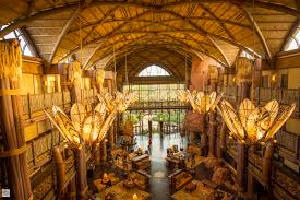 kilimanjaro club at disney u0027s animal kingdom lodge