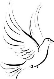 dove idea but with 2 symbolizing birds maybe our