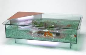 Aquarium Coffee Table Coffee Table Or Aquarium I Saw This Idea I Like Turn An