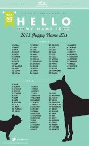 best 25 dog names ideas on pinterest puppy names dog having