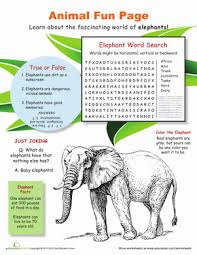 animal fun pages 4th grade worksheets education com