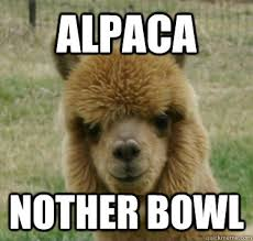 Alpaca Meme - good guy alpaca memes quickmeme