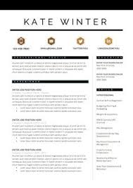 Pages Resume Templates Mac Getessay by Professional Modern Cv Template For Pages Modern Cv Template Cv