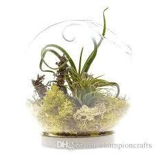 Indoor Plant Vases Round Globe Moss Succulent Terrarium Bowl Planter Terrarium Vase