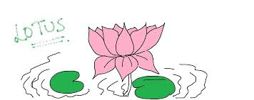 easy kids drawing lessons how to draw a flower lotus easy for